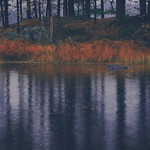 Dalarna Autumn