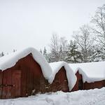 Vinter vid Gimmen