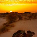Sahara sunrise