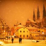 Uppsala vintern 2012